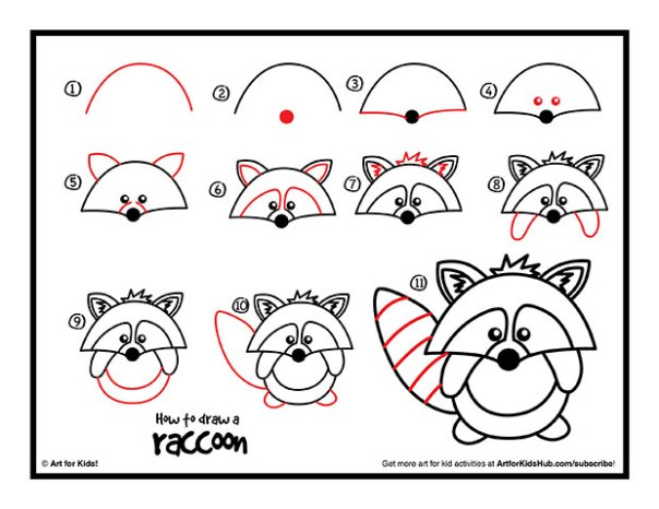 how-to-draw-a-raccoon