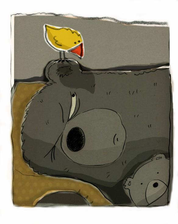bear bird 3