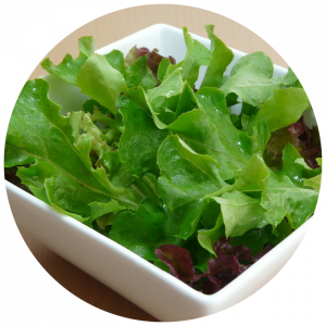 activities_plantyourownsalad-300x300